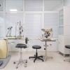 dentista cento-35